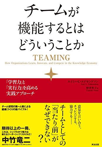 チーミング試行錯誤録 (1) – ピラミッド型組織にチーミングを根付かせる事は可能なのか?